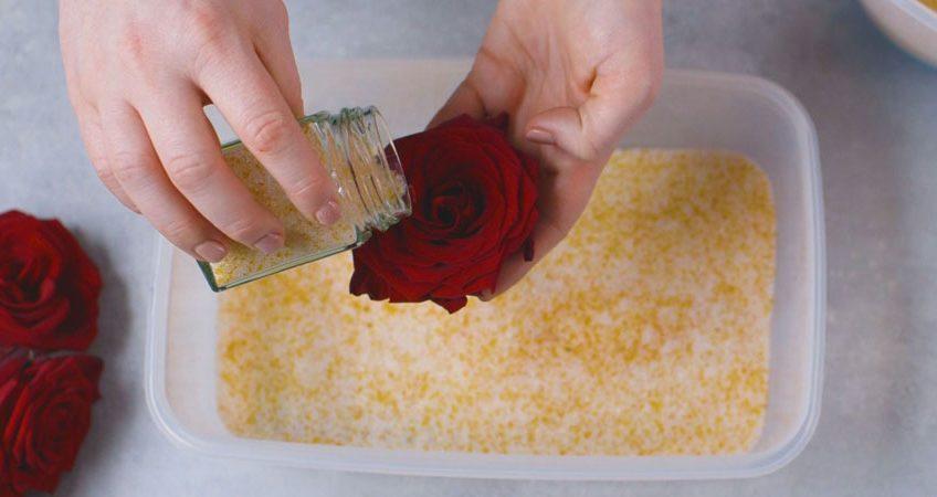 خشک کردن گل های طبیعی با سیلیکاژل